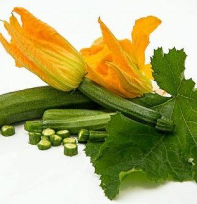 Charlotte di zucchine allo chèvre con salsa di erbe aromatiche