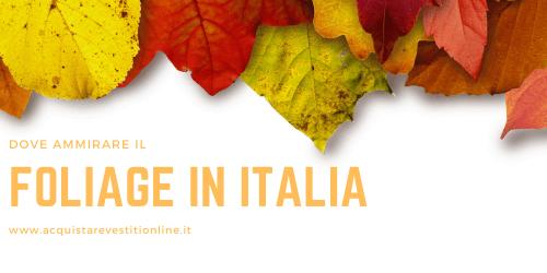 Dove ammirare il foliage in Italia